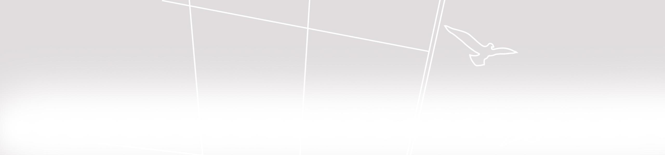 bg-sfondo-spider