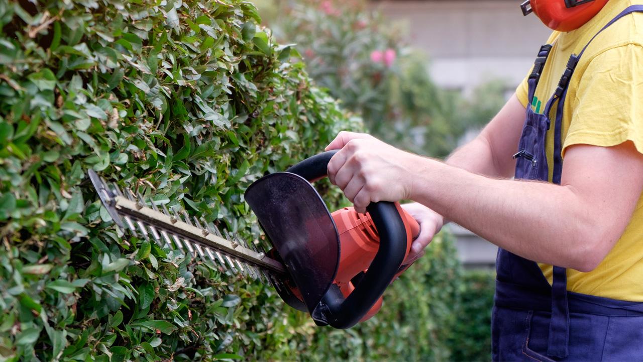 Servizi giardinaggio verona, pulizia giardinaggio verona